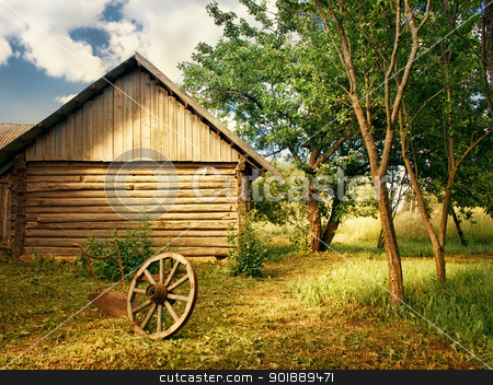 country yard stock photo, country yard with trees, wheel and plough by Sergej Razvodovskij