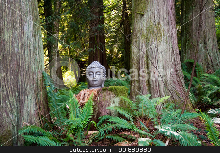 Buddha stock photo, Buddha head in a forest by Jaime Pharr