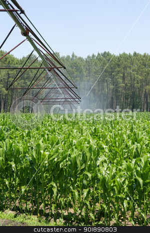 Watering system stock photo, Watering system by photography33