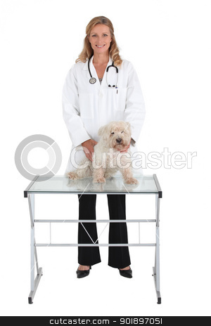Animal health stock photo, Animal health by photography33
