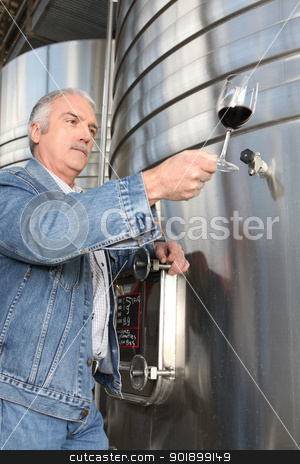 Man checking a glass of wine stock photo, Man checking a glass of wine by photography33
