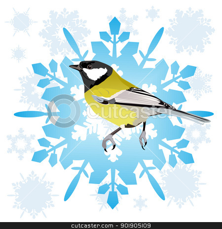 Sinica and snowflake stock vector clipart, Tit sitting on the abstract snowflake. Illustration on white background. by Sergey Skryl