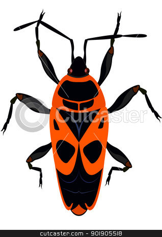 Beetle - The soldier stock vector clipart, Beetle - The soldier. The illustration on a white background. by Sergey Skryl