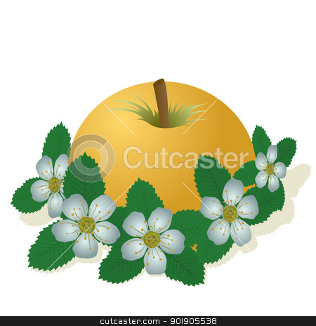 Apple stock vector clipart, Apple and apple flowers. The illustration on a white background by Sergey Skryl