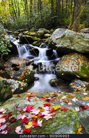 Waterfall in the smoky mountains stock photo, A small water fall in the Smoky mountains with red leaves by Don Fink