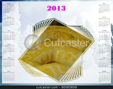 2013 year of the snake stock photo, 2013 year of the snake by galkinvladimir