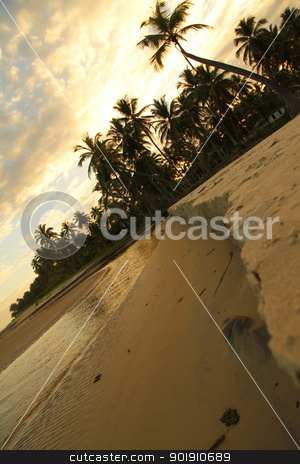 Evening at the Beach stock photo, Photo taken in Bahia, Brazil, South america. by Michael Osterrieder