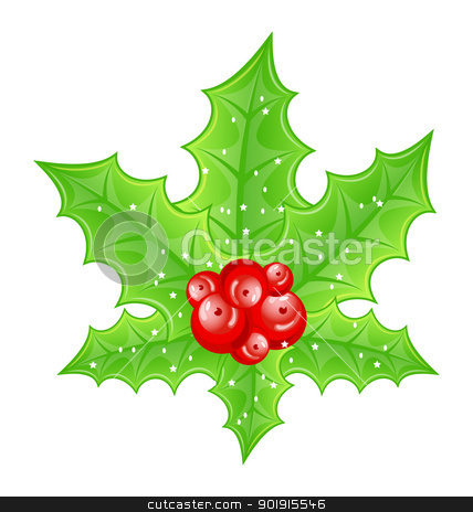 Christmas decoration holly berry branches isolated on white back stock vector clipart, Illustration Christmas decoration holly berry branches isolated on white background - vector by -=Mad Dog=-