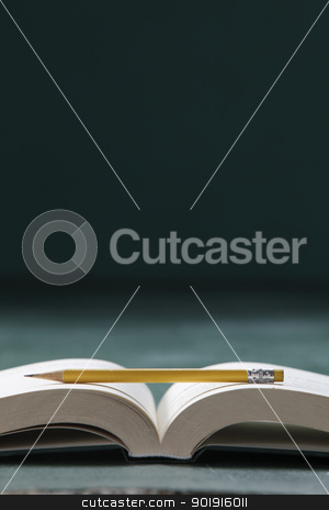 book and pencil stock photo, pencil resting on the open book by eskaylim