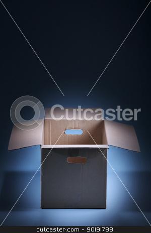 Empty Cardboard Box stock photo, Empty Cardboard Box on the blue background by eskaylim
