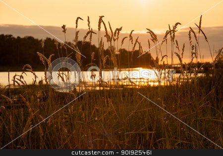 Reflection Of A Setting Sun stock photo, Sun setting by the Fraser River near Vancouver, Canada by michael_fox