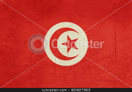 Grunge Tunisia Flag stock photo, Grunge sovereign state flag of country of Tunisia in official colors.  by Martin Crowdy