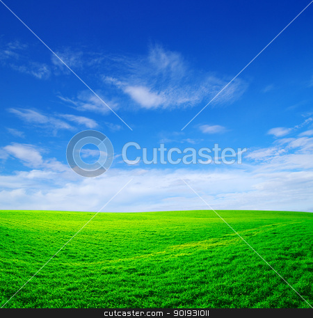 field stock photo, field on a background of the blue sky by Vitaliy Pakhnyushchyy