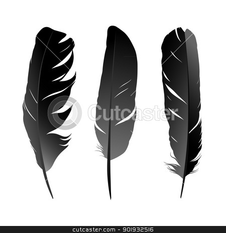 Feather stock vector clipart, Vector set of black bird's feather on white background by Mikhail Puhachou