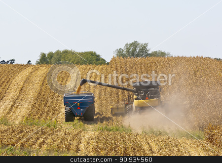 Iowa Cornfields stock photo, A combine and a tractor work to harvest a Midwest corn crop in Northeast Iowa. by Walter Arce