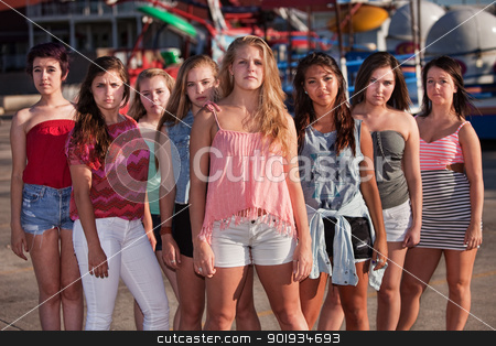 Serious Group of Girls at Park stock photo, Group of eight serious teenage girls standing at an amusement park by Scott Griessel