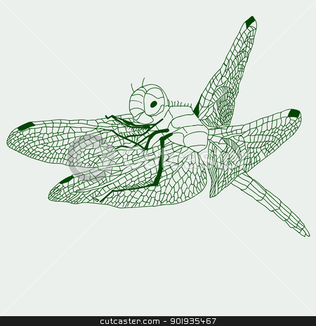 dragonfly  drawing , vector. stock photo, dragonfly  drawing , vector. by aarrows