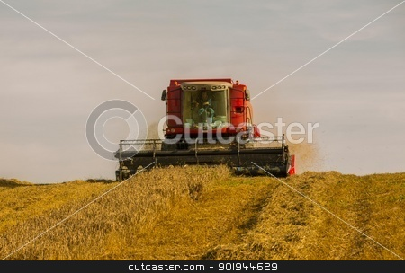 Beating the Weather 1 stock photo, Farmer and Combined Harvester processing a wheat field in West Somerset, England. by Trevor Jordan