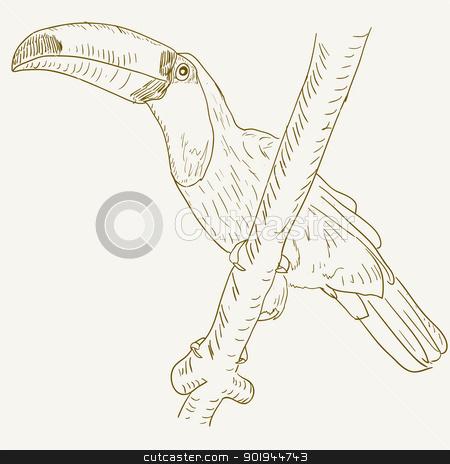 Toucan bird sitting on a tree branch. stock vector clipart, Toucan bird sitting on a tree branch. by aarrows