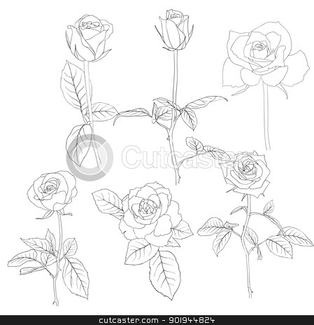 Set of in hand drawn style roses.  stock vector clipart, Set of in hand drawn style roses. Vector EPS 10 illustration. by aarrows