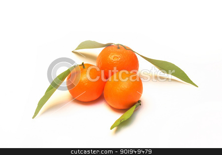 tangerines stock photo, tangerines isolated on white background by Oleksandr Pakhay
