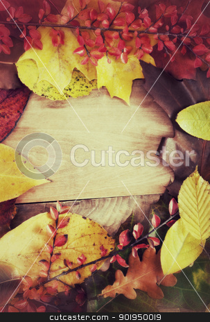 Autumn Background stock photo, Autumn Background - Color Autumn Leafs on Wooden Background - Vintage Look by JAMDesign