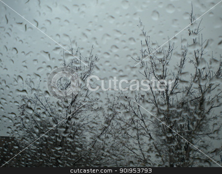 Rain drops stock photo, Rain falling on a window pane with trees on the other side. by Cora Reed