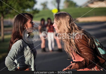 Two Girls Arguing stock photo, Two serious teenage female students arguing outside by Scott Griessel
