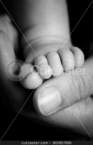 Babys foot stock photo, Foot from a four weeks old baby. Studio picture in black and white by Picturehunter