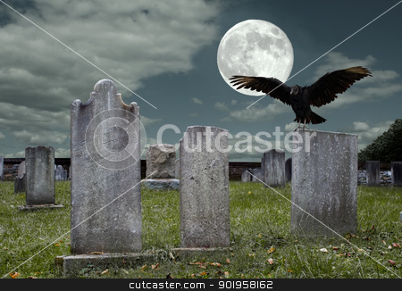 Graveyard with Full Moon stock photo, An old graveyard and vulture in the light of the full moon. by Delmas Lehman