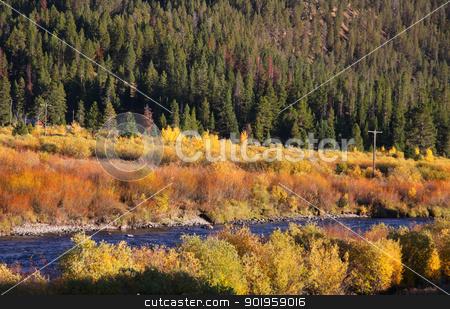 Autumn in Yellow stone stock photo, Beautiful autumn scene in Yellowstone by Sreedhar Yedlapati