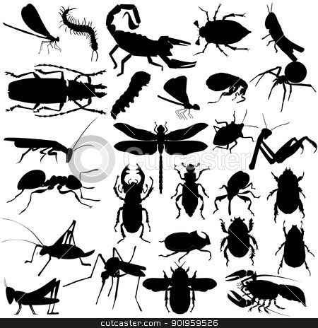 insects and spiders stock vector clipart, Big set of different insects and spiders by Oleksandr Kovalenko