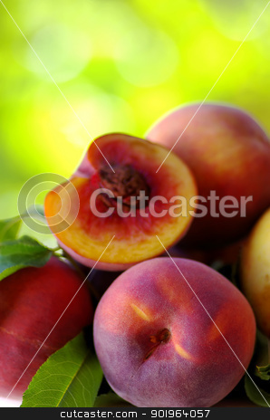 Ripe peaches  stock photo, Ripe peaches on green background by Inacio Pires