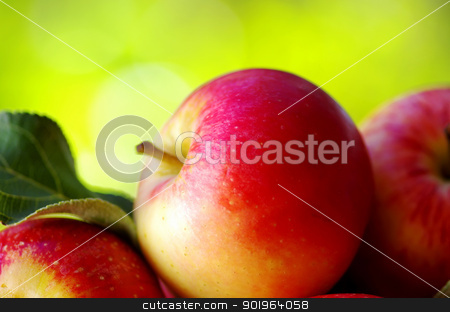 ripe red apples on table stock photo, 	ripe red apples on table by Inacio Pires