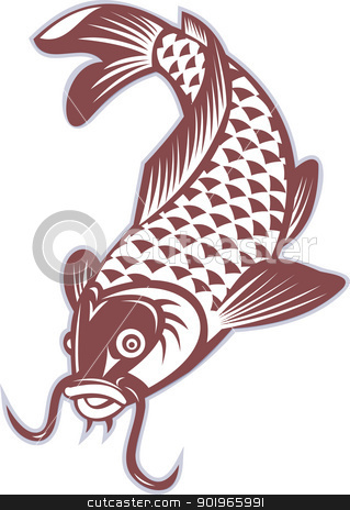 Koi carp swimming down stock photo, illustration of a Koi carp swimming down on isolated white background by patrimonio