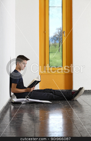 Reading in school stock photo, Photo of a young student reading a book in the hallway of his school.  by © Ron Sumners