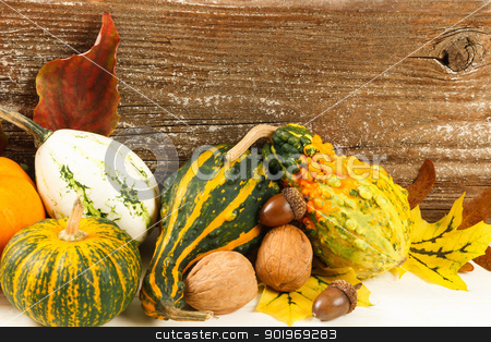 Colorful Fall Harvest Gourds And Nuts stock photo, Traditional colorful autumn harvest of gourds and nuts on a white surface with a rustic wooden background by Karen Sarraga