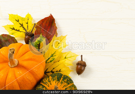 Close Up Of Pumpkin, Autumn Leaves And Acorns stock photo, Overhead close up image of traditional Fall decorations with pumpkin, acorns and colorful leaves against and aged white wood background with copy space on right by Karen Sarraga