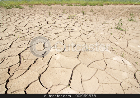 dry season - dried ground stock photo, Detail of the cracked ground - dry season  by Siloto