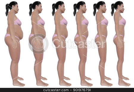 Weight Loss Progress Side View stock photo, A side view illustration of a obese woman's weight loss progress in a series of six renders. Isolated on a solid white background. by Randall Reed