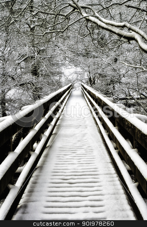Snowcovered walkway Nidd Gorge stock photo, Snowcovered empty walkway and bare branched deciduous trees on a cold winter day at Nidd Gorge, United Kingdom by Joshua Hilton
