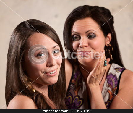 Two Females Gossping stock photo, Two beautiful Caucasian females gossiping by Scott Griessel
