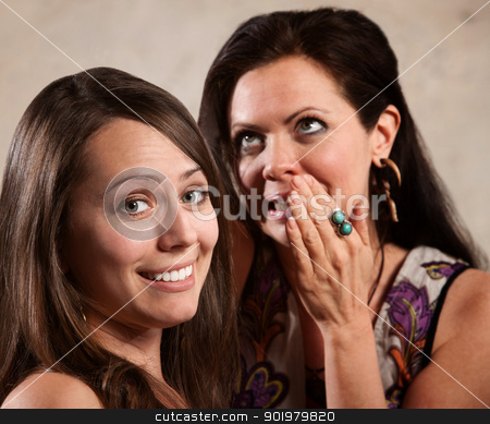 Two Attractive Ladies Gossipping stock photo, Two attractive ladies whispering and gossiping together by Scott Griessel