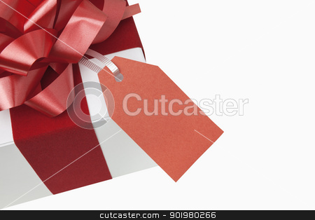 Christmas Present stock photo, Christmas present with blank gift tag, includes clipping path by Bryan Mullennix