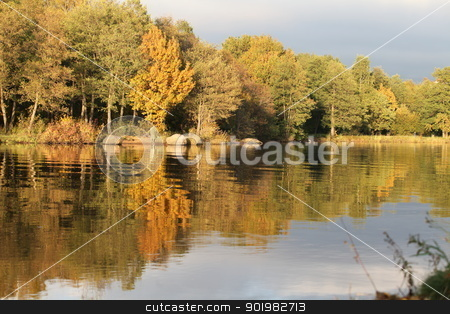 Autumn  stock photo, Autumn trees reflecting off the water by mrivserg
