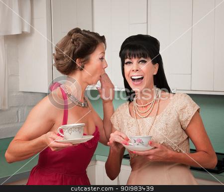 Woman Whispers Joke  stock photo, Caucasian woman whispers joke to friend in her kitchen by Scott Griessel