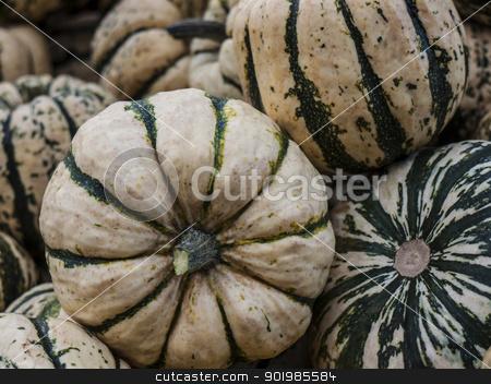 Pumpkin-Sweet-Dumpling stock photo, Pumpkin - a wonderful vegetable in autumn, which comes in many variations, here the variety Sweet Dumpling by Heike Jestram