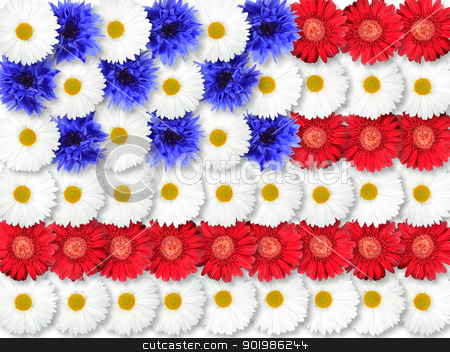 Background of flowers as USA flag stock photo, Abstract background of flowers as USA flag. Close-up. Studio photography. by Andrey Khritin