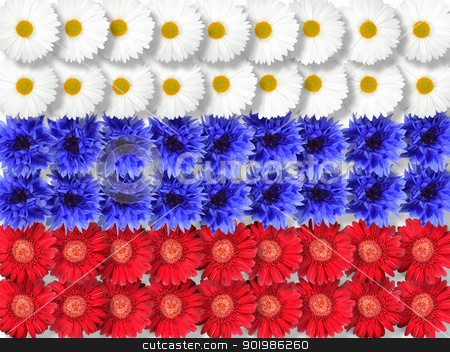 Background of flowers as Russia flag stock photo, Abstract background of flowers as Russia flag. Close-up. Studio photography. by Andrey Khritin