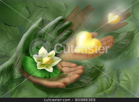 Still-life with hands, leaf and flower as heart stock photo, Still-life with hands, leaf and flower as heart. Studio photography. by Andrey Khritin